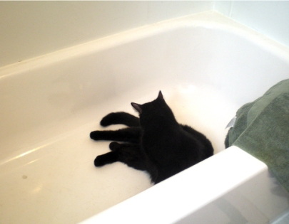The tub works fine for bathing, even without water.