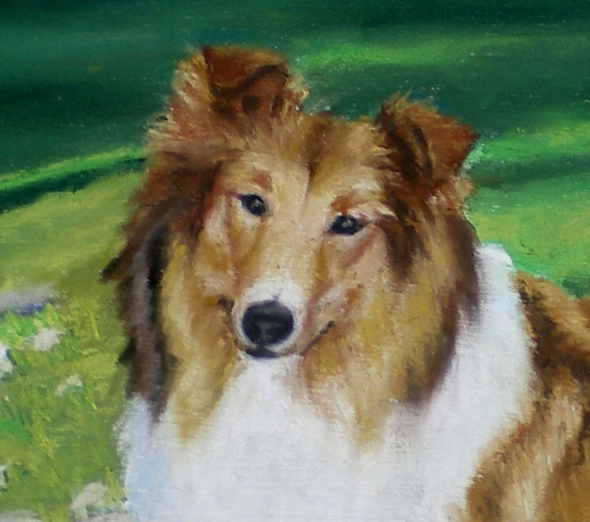 Lassie's face in detail.