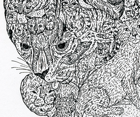 "Detail of the mother cat's face in ""Cat's Tale""."