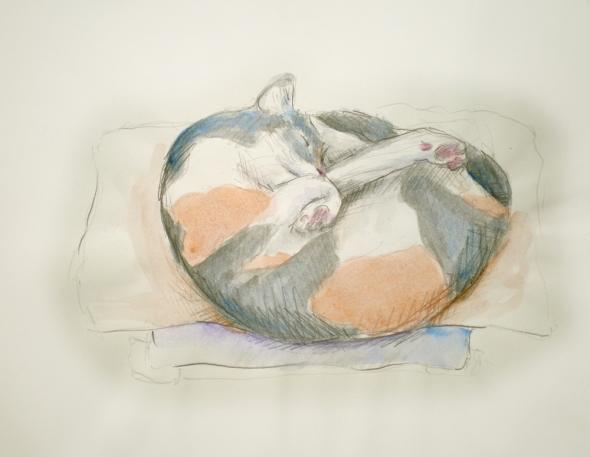 Peaches' Nap Spot, pencil and watercolor