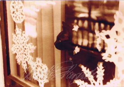 photo of black cat looking out window with snowflakes