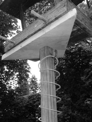 bird feeder with Slinky squirrel baffle