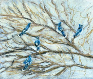 Blue Jays on Branches