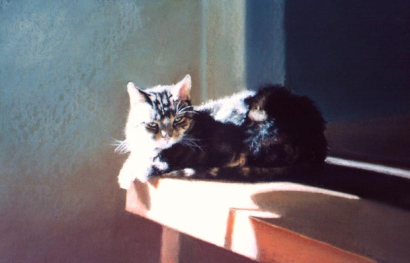 pastel painting of a cat sleeping on a table