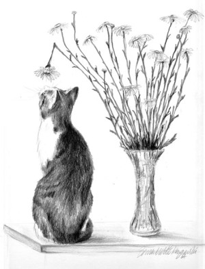 pencil sketch of cat with vase of daisies