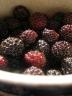 photo of black raspberries in dish
