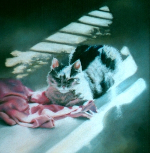 pastel painting of gray cat on pink sweater in the sun