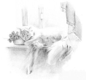 pencil drawing of cat sleeping on windowsill