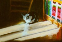 oil pastel drawing of cat in the sun