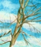 pastel painting of bare tree branches against sky