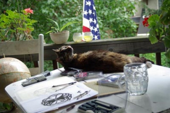 photo of cat on drawing table
