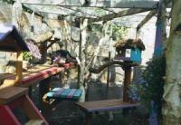 photo of cat enclosure