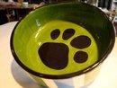 photo of green dog bowl