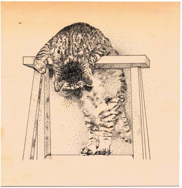 ink sketch of cat on ladder