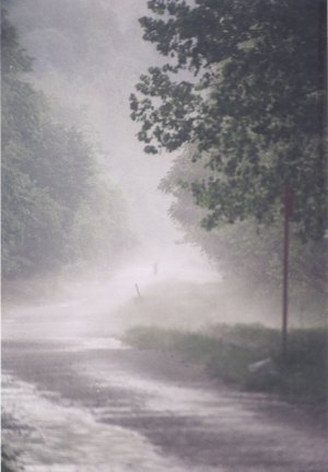 rain on trail