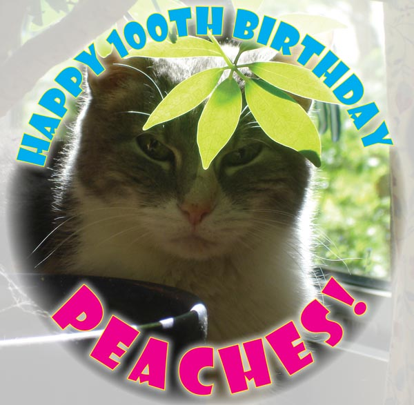 peaches' birthday photo