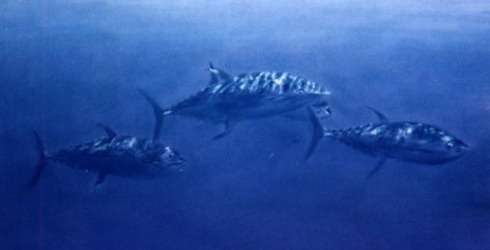 pastel painting of tuna underwater