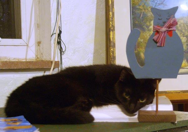 black cat with blue kitty figurine