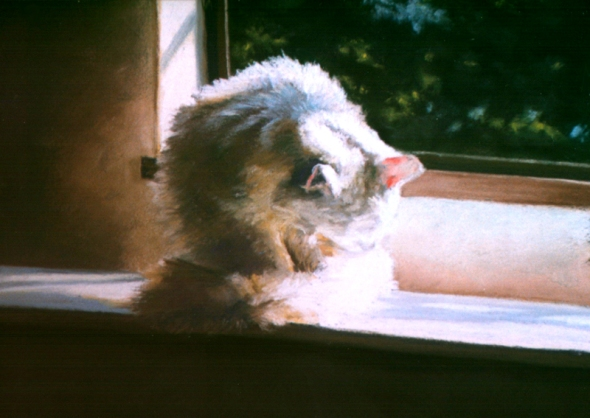 pastel painting of cat bathing