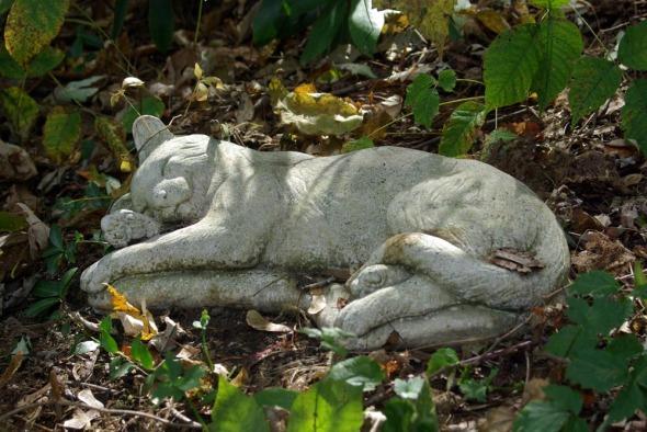 stone kitty 2