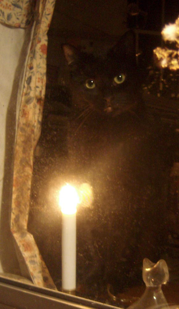 black cat at window with candelabra