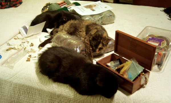 three cats with craft items