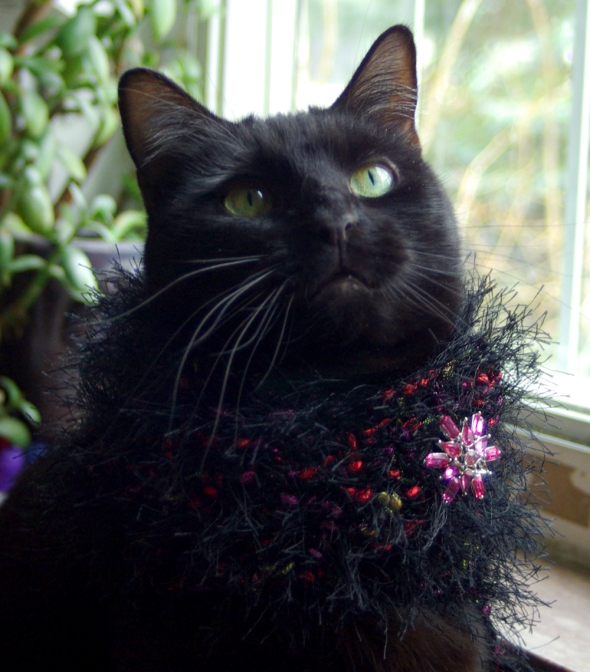 black cat with fuzzy crocheted collar