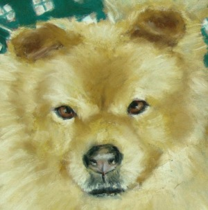 detail of dog's face