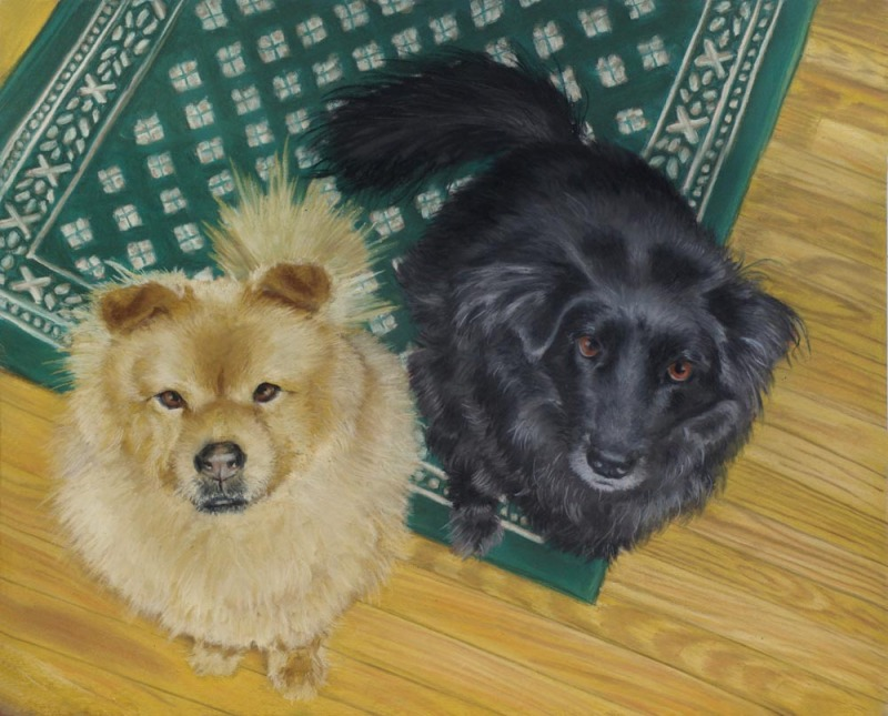 bodie and bear final portrait