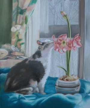 painting of dilute calico with amaryllis