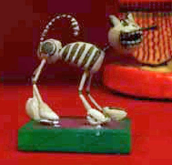skeleton kitty