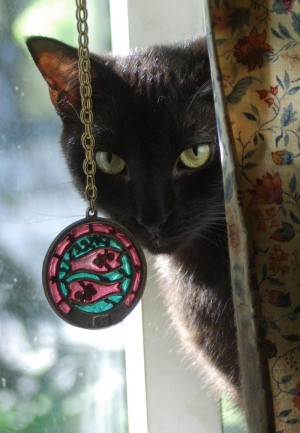 black cat with pisces medallion