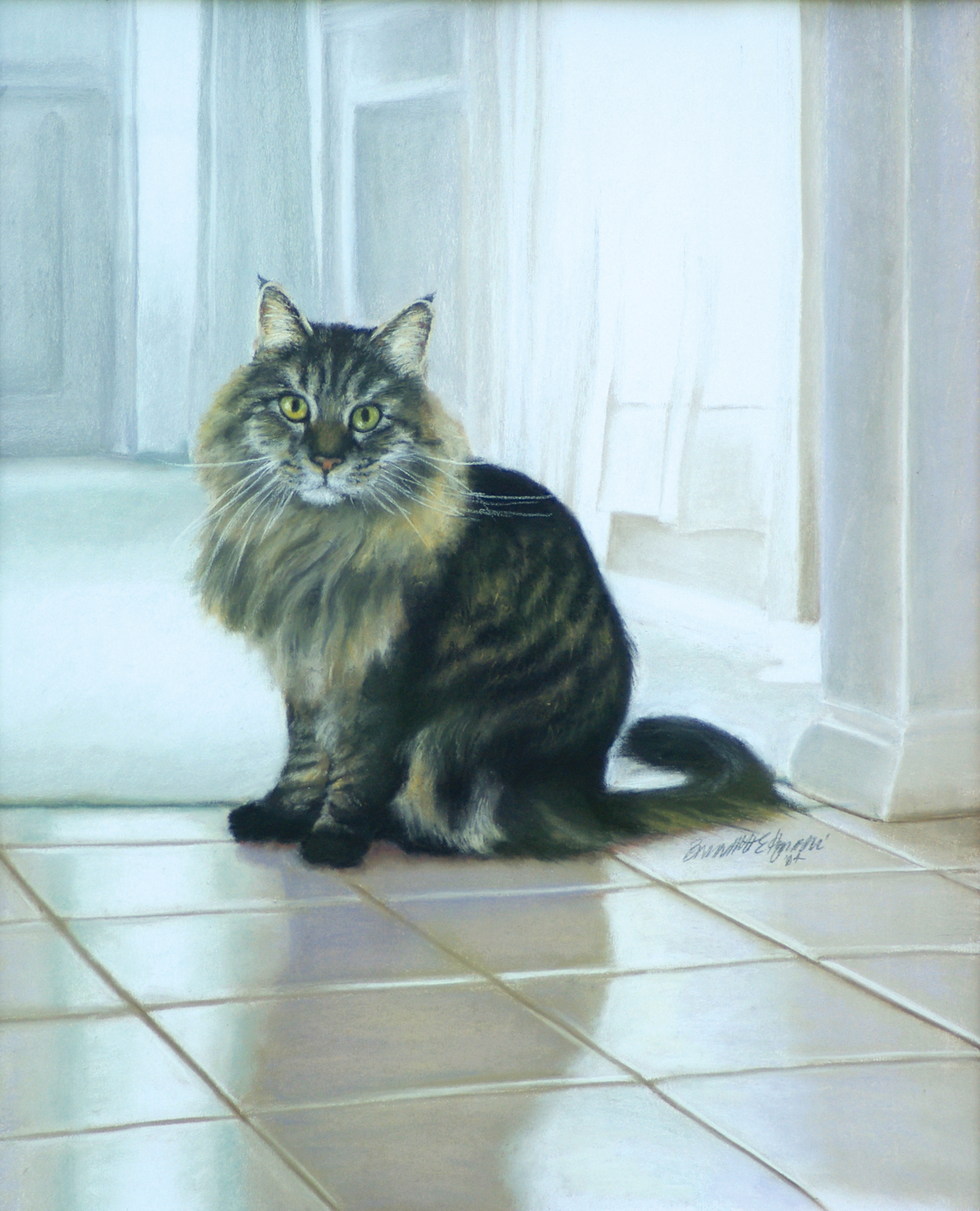 portrait of Maine Coon cat named Felix