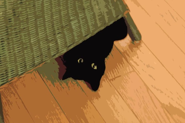 posterized image of black cat under chair