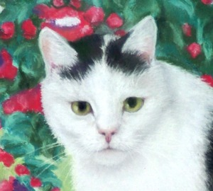 closeup of cat face in portrait