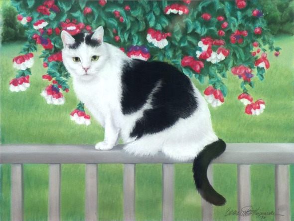 pastel painting of black and white cat