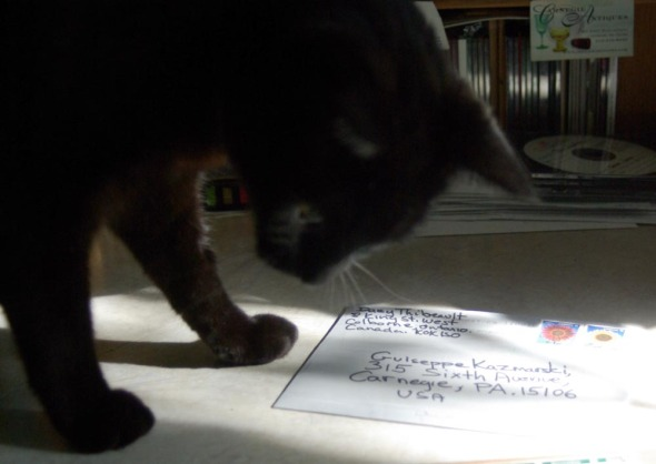 black cat with envelope