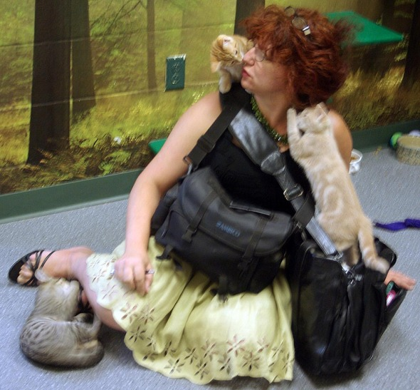 me with kittens