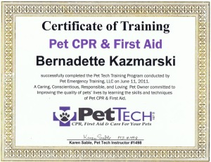 my pet certification