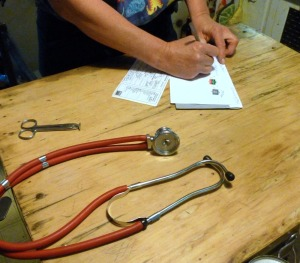 veterinarian with records