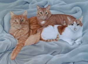 three orange cats