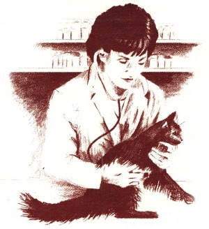 sketch of cat getting exam
