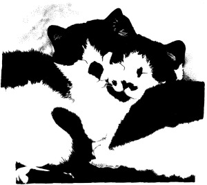 sketch of black and white kitties