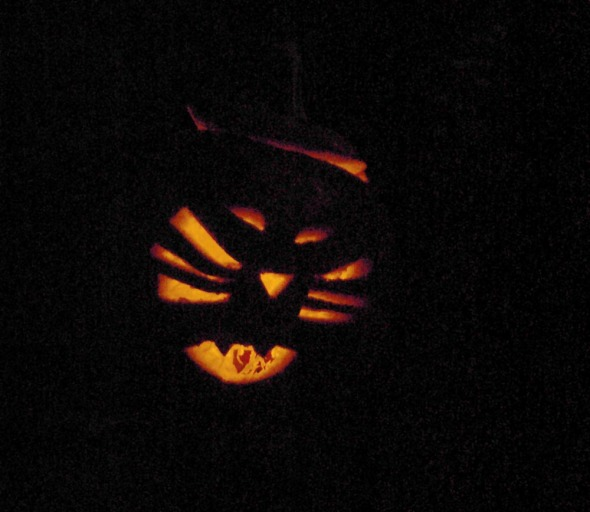 cat face jack o  lantern