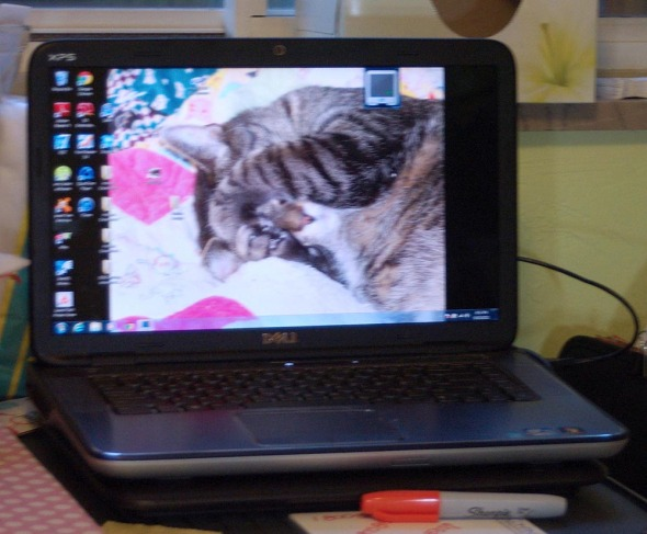 background on computer screen