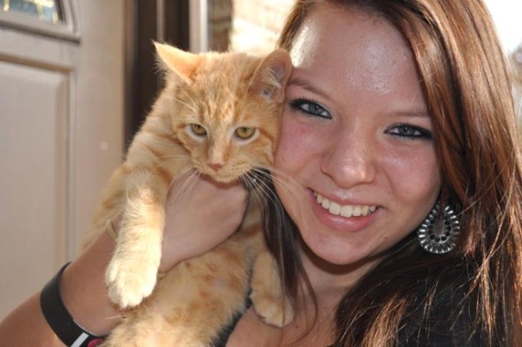 orange kitten with girl