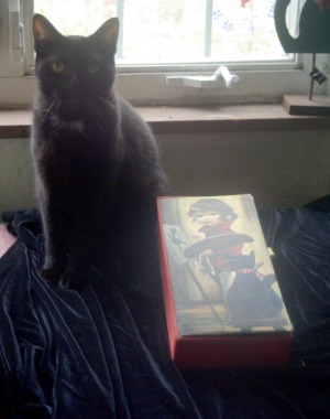 black cat with decorative box