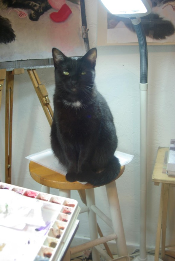 black cat on stool by easel