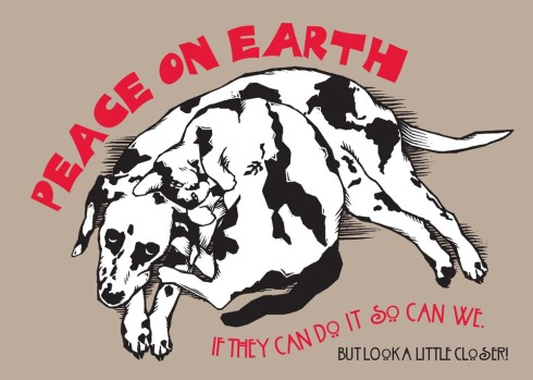 cat and dog and peace on earth