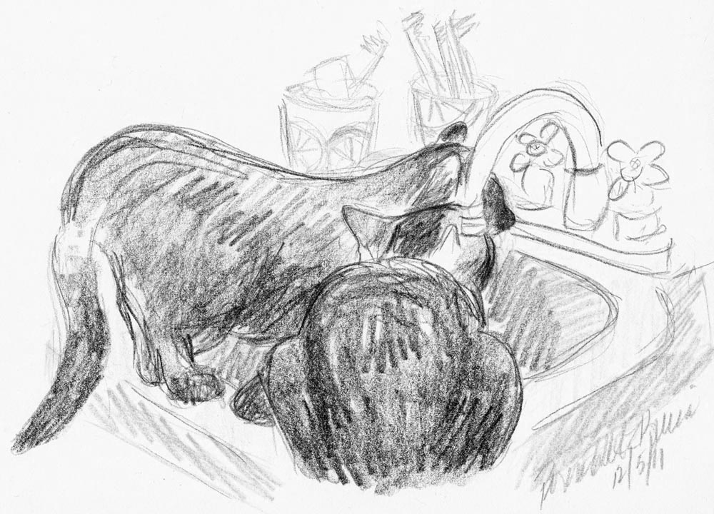 sketch of two cats at sink